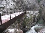 Puente en la senda del Oso