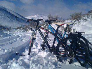 KtrAK en La Mora alquiler bicicletas nieve